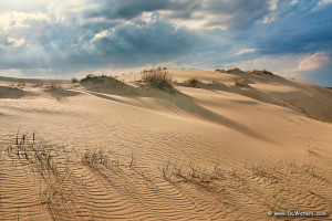 Afternoon light at Jockey's Ridge State Park Nags  Head.